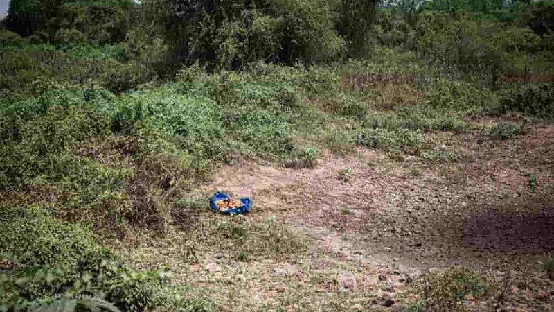 MS é o 3º estado do país com maior área seca do país, indica agência nacional de águas
