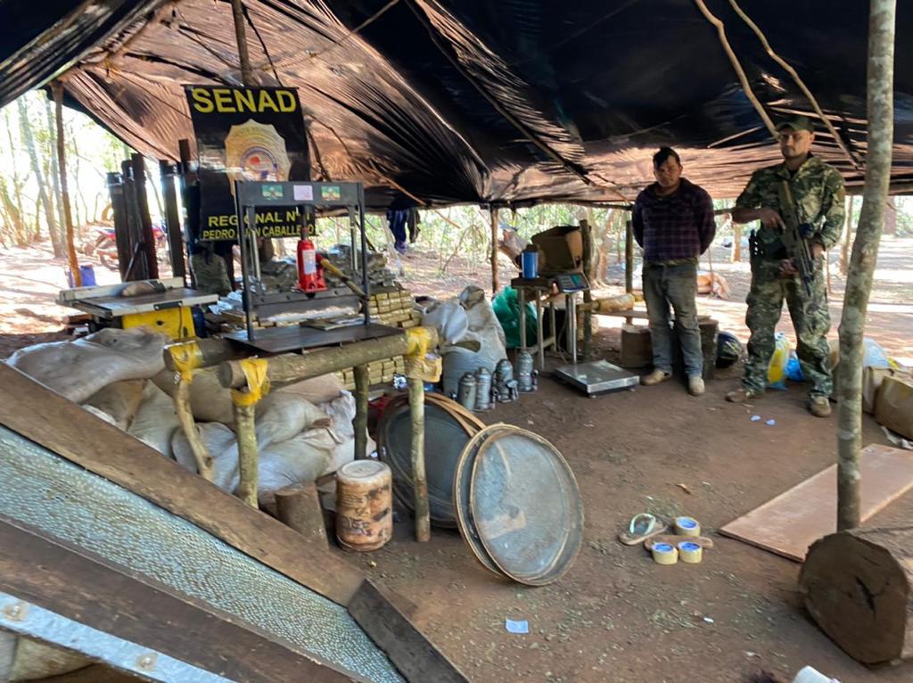 SENAD apreendeu 7,4 toneladas de maconha em mega plantação