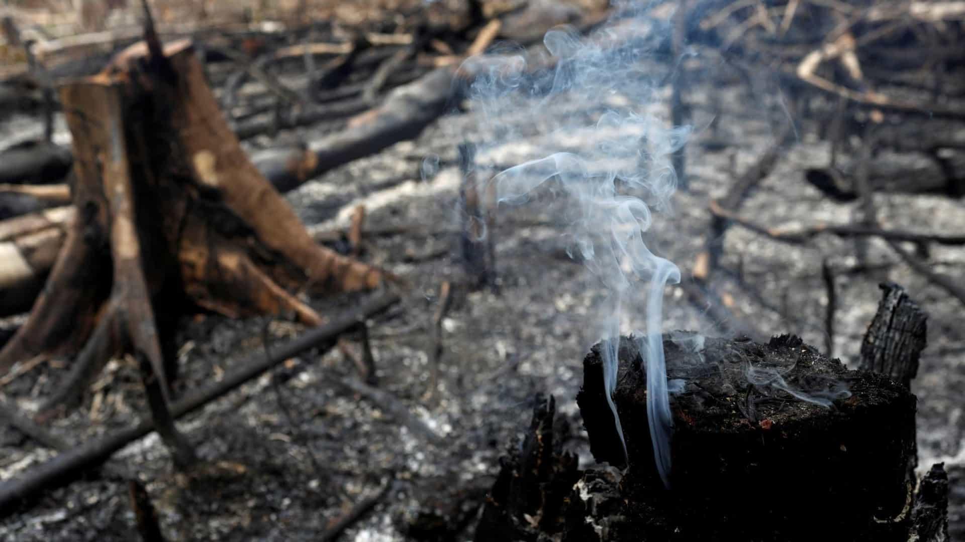 Amazônia tem junho com maior número de queimadas desde 2007