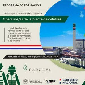 Llamado para participar del programa de formación de operarios de planta de celulosa en Concepción.