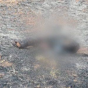 Morte de casal encontrado carbonizado e esquartejado em sacos pretos teria envolvimento com PCC