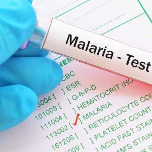 Medicamento para o câncer é 100% eficaz contra malária em ensaio clínico