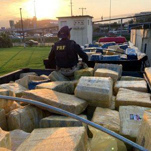 Ação conjunta PRF e PF faz a maior apreensão de maconha da história de SC. Um total de 24,5 toneladas estavam escondidas em carga de milho