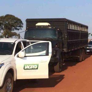 PARANHOS.Caminhões com gado sem origem são interceptados em direção ao Paraguai próximo à linha de fronteira em MS