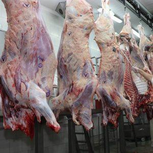 Ingresos de la carne logran nuevo récord con más de US$ 1.134 millones a agosto