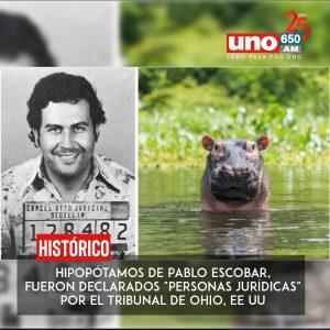 Estados Unidos, reconoció como personas jurídicas, a las crías de hipopótamos de Pablo Escobar.