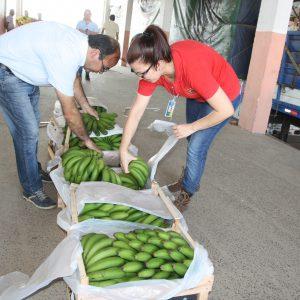 Paraguay y Argentina aplican desde hoy el certificado fitosanitario electrónico